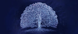 solsticetree-675x295